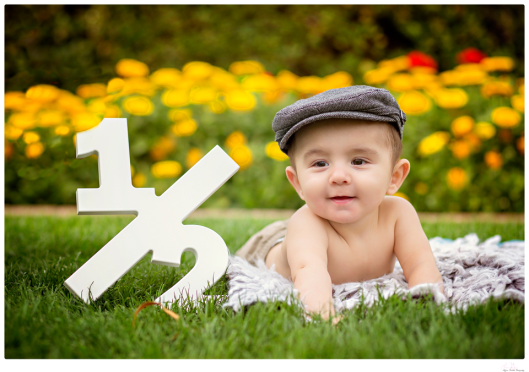 baby photography, photographer, milestone session, 6 month session