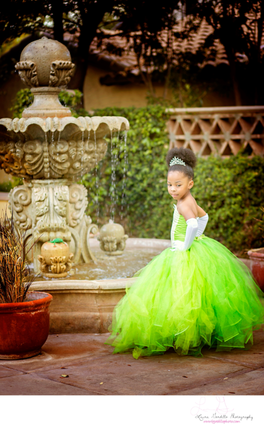 Princess and the Frog, Disney, Phoenix, Child, Photographer